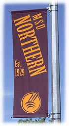 Nothern Banner on light pole
