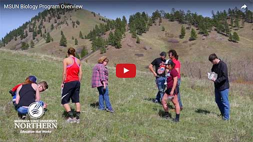 Video Link: 2016 MSU-Northern Biology Program Overview - Click to View